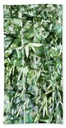 Bamboo Forest In South Carolina Bath Towel