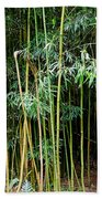 Bamboo Wind Chimes  Waimoku Falls Trail  Hana  Maui Hawaii Bath Towel