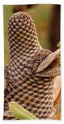 Banksia Cone 2 Bath Towel