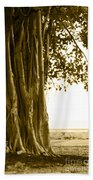 Banyan Surfer - Triptych  Part 2 Of 3 Bath Towel