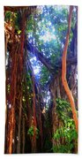 Banyan Tree Hand Towel