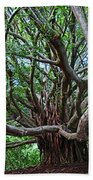 Banyan Tree Bath Towel