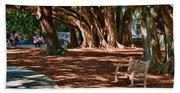 Banyans - Marie Selby Botanical Gardens Bath Towel