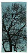 Bare Branches And Storm Clouds Bath Towel