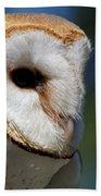 Barn Owl - Intensity Bath Towel