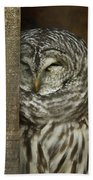 Barred Owl Bath Towel