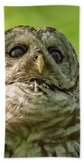 barred Owl Portrait Bath Towel