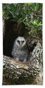 Barred Owlet Bath Towel