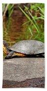 Basking Blanding's Turtle Bath Towel