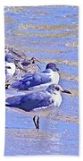 Basking On The Seashore Bath Towel