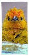 Bath Time Finch Bath Towel