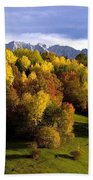 Bavarian Alps 2 Bath Towel