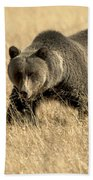 Bear On The Prowl Bath Towel