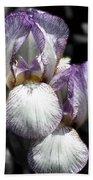 Bearded Irises Partial Color Bath Towel