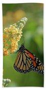 Beautiful Butterfly Bath Towel