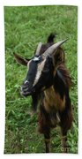 Beautiful Face Of A Billy Goat With Tan And Black Silky Fur Bath Towel