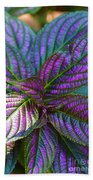Beautiful Foliage  Bath Towel