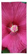 Beautiful Large Hibiscus Bath Towel