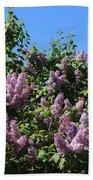 Beautiful Lilacs Day Bath Towel