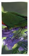 Beautiful Lorikeet Bath Towel
