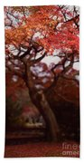 Beautiful Red Japanese Maple Tree In A Garden Bath Towel