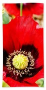Beautiful Red Poppy Bath Towel