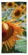 Beautiful Sunflower Field In South Carolina Bath Towel
