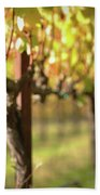 Beautiful Vineyard In Napa Valley Bath Towel