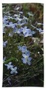 Beauty Blue Flowers Bath Towel