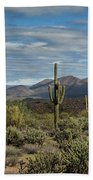 Beauty Of The Sonoran  Bath Towel