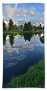 Beaver Dam At Schwabacher Landing Hand Towel