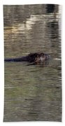 Beaver Glide Bath Towel