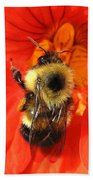 Bee And Nasturtium Bath Towel