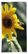 Bee Flying To Bright Lemon Yellow Wild Sunflower In High California Sun Bath Towel