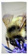 Bee In A Bubble Bath Towel