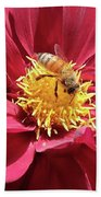 Bee On Beautiful Dahlia Bath Towel