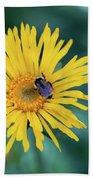 Bee On Curlyhead Goldenweed Bath Towel
