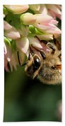 Bee On Flower 1 Bath Towel