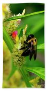 Bee On Flower Bath Towel