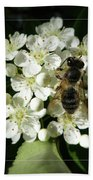 Bee On White Flowers 2 Hand Towel