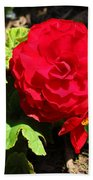 Begonia Flower - Red Hand Towel