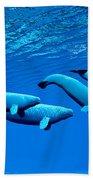 Beluga Whale Pod Bath Towel