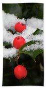 Berries In Snow Bath Towel