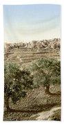 Bethlehem Field 1890 Bath Towel