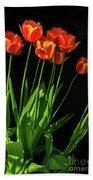 Bicolor Tulips Bath Towel