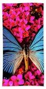 Big Blue Butterfly On Kalanchoe Flowers Hand Towel