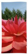 Big Dahlia Flower Blooming Summer Floral Art Prints Baslee Troutman Bath Towel