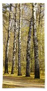 Birch Alley In Autumn Bath Towel