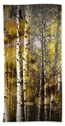 Birch Bark And Trees Abstract Bath Towel