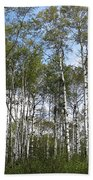 Birch Forest Bath Towel